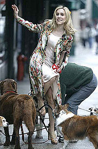 Satc_carrie_tangled_dogs