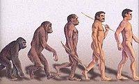 Ape_man_1